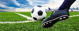 Sportfejlesztési Programok